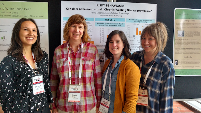 Rebecca Carter (from left), Dr. Susan Lingle, Kelsey Saboraki, and Cora Anne Romanow at the Animal Behavior Society conference in June. Photos supplied.