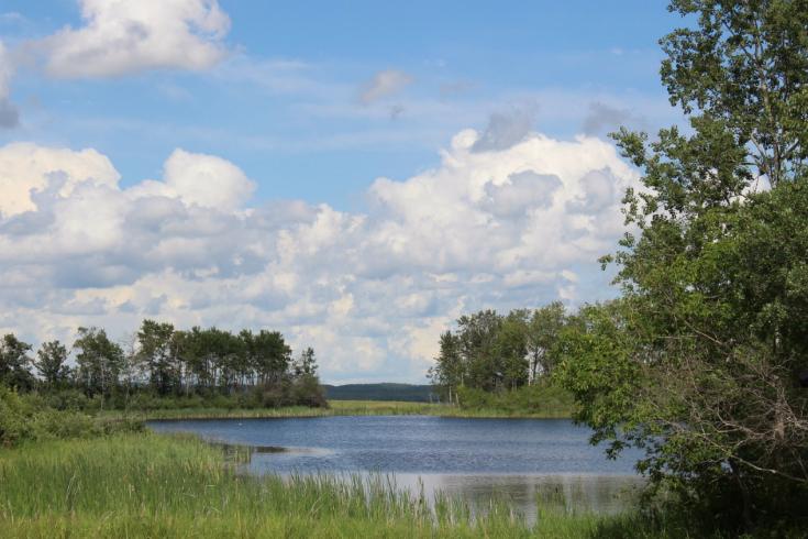 w-08-bohr-hist-3573-lake-at-campsite