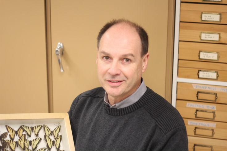 Prof Richard Westwood