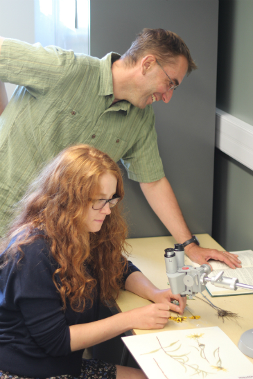 Dr. Rafael Otfinowski + Holly Swart , ©UWinnipeg, Using the Department of Biology herbarium to identify, catalogue, and digitize plant specimens collected in the field