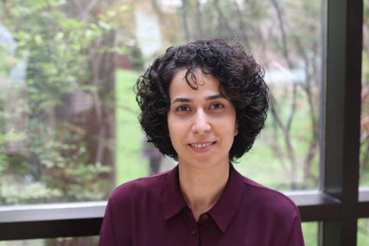 Dr. Zeinab Mashreghi, Resampling Methods for Survey Data with Extensions in other Contexts, mathematics and statistics