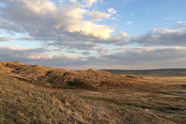 g prairie i
