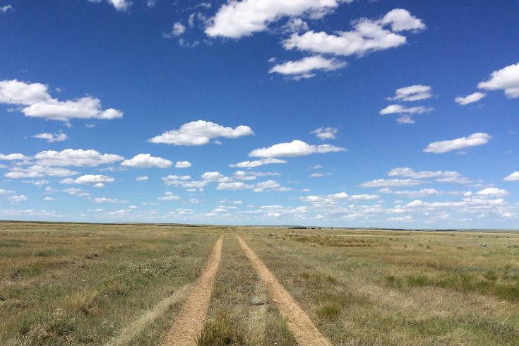 g prairie iv