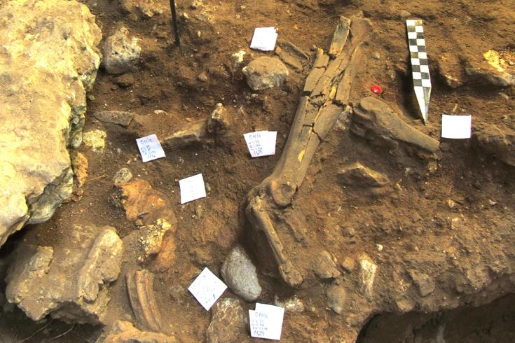 Cave Excavation 735x