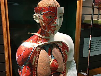 medical history exhibit at the Health Sciences Centre