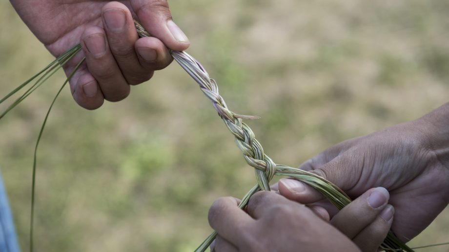 grass braid, Indigenous land-based learning